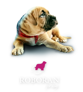 Roboran for dogs